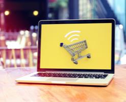 Expert E-Commerce